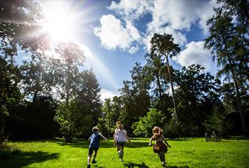 Tree Champion Family Events at Westonbirt Arboretum